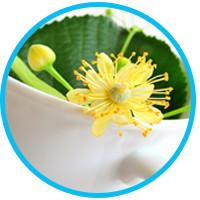 get-rid-of-dandruff-tea-tree