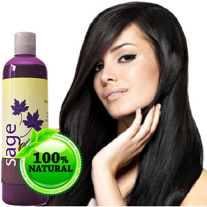 maple-holistics-sage-shampoo