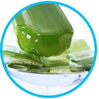organic-shampoo-for-dandruff