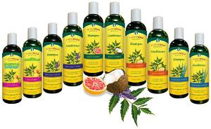 organix-south-theraneem-shampoo