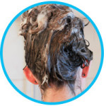 How Do Shampoo and Water Act Together to Cleanse the Hair?