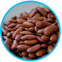 foods-that-prevent-hair-loss-beans