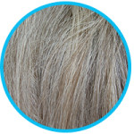 What Causes Grey Hair and How to Prevent It?