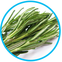 health-benefits-of-rosemary-oil
