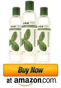 eden-bodyworks-all-natural-shampoo