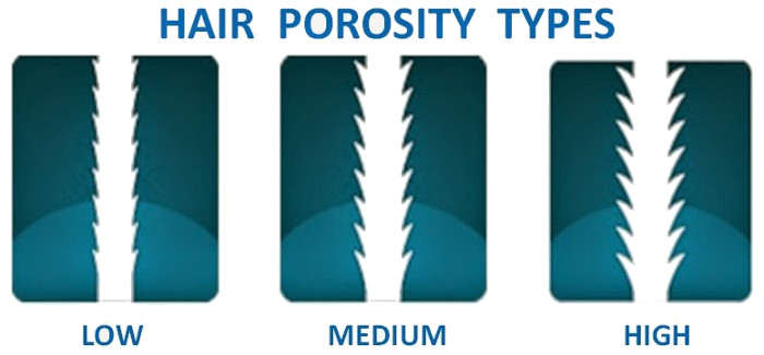 hair-porosity-type