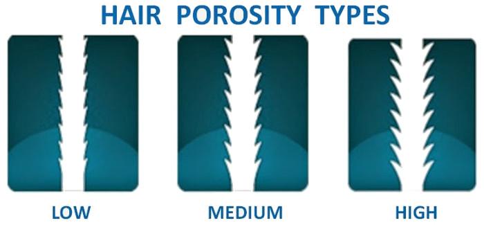 hair-porosity-type